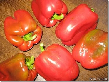 Paprika aus meinem Garten