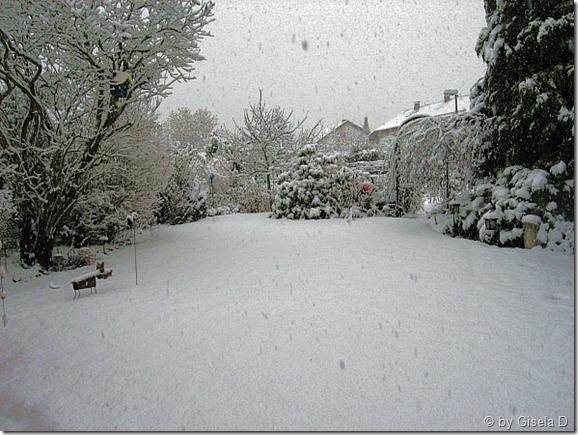 Schnee 004