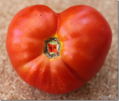 Tomate mit Herz