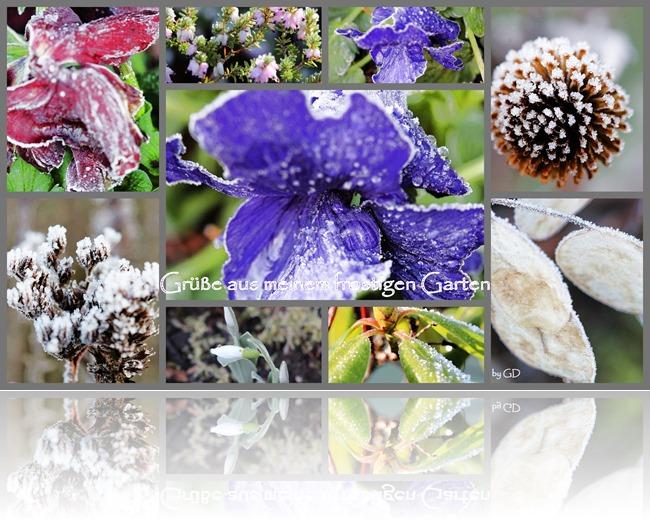 Winterlicher Gartengruß